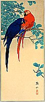 Sozan Ito 1884-? - Two Macaws