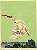 Hideaki Tatehori born 1956 - Flying Away