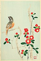 Shundei Nakamura 1904-1966 - Japanese Quince and Bunting