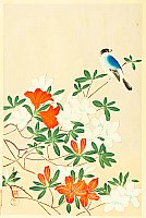 Bakufu Ono 1888-1976 - Blue Bird and Azaleas
