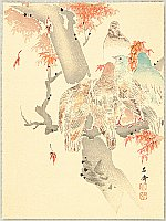Yosai Kikuchi 1788-1878 - Pigeons and Maple