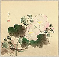 Chikuseki  active ca. 1900 - China Rose
