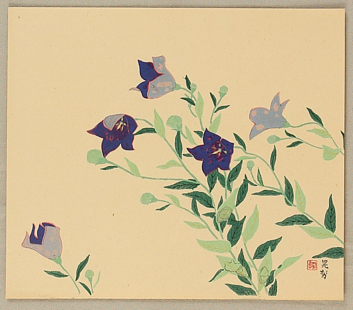 Miwa Chosei Blue Balloon Flower Artelino Ukiyo E Search