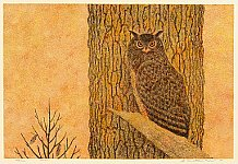 Yukio Katsuda born 1941 - No. 69 - Eagle Owl