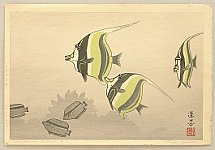 Hawaiian Fish (B) - Toshi Yoshida