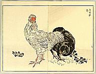 Bunrei Maekawa 1837-1917 - Rooster and Hen