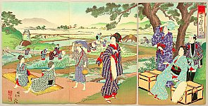 Chikanobu Toyohara 1838-1912 - Customs and Manners of Edo 12 Months - May