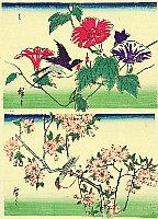 Hiroshige II Utagawa 1829-1869 - Birds, Morning Glories and Cherry Blossoms