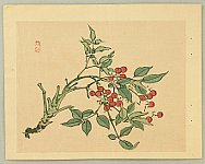 Bairei Kono 1844-1895 - Red Berries