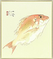 Seiho Takeuchi 1864-1942 - Sea Bream