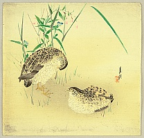 Gekko Ogata 1859-1920 - Two Quails