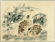 Eiichi Kotozuka 1906-1979 - Quails and Bush Clover