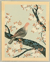 Bakufu Ono 1888-1976 - Collection of Japanese Flowers and Birds - Turtle Dove and Cherry