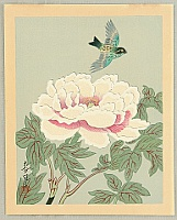 Bakufu Ono 1888-1976 - Collection of Japanese Flowers and Birds - Colorful Bird and Peony