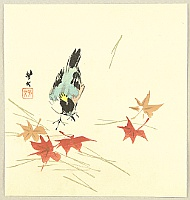 Hobun Kikuchi 1862-1918 - Bird and Maple