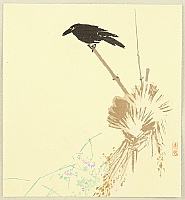 Shunkyo Yamamoto 1871-1933 - Crow
