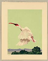 Hideaki Tatehori born 1956 - Flying Japanese Crested Ibis