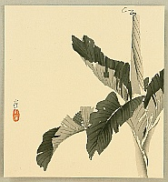 Konobu Hasegawa fl.ca. 1867-1879 - Banana Tree