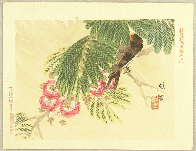 Bairei Kono 1844-1895 - Flowers and Birds Picture Album by Bairei No.6
