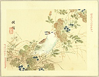 Bairei Kono 1844-1895 - Flowers and Birds Picture Album by Bairei  No.9
