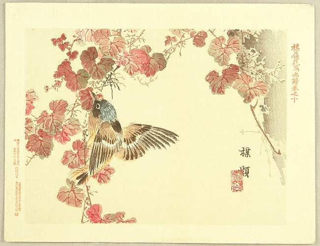 Bairei Kono 1844-1895 - Flowers and Birds Picture Album by Bairei  No.10