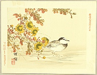 Bairei Kono 1844-1895 - Flowers and Birds Picture Album by Bairei  No.12