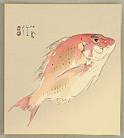 Seiho Takeuchi 1864-1942 - Sea Bream - Tai Fish