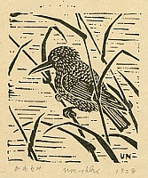 Unichi Hiratsuka 1895-1997 - Kingfisher