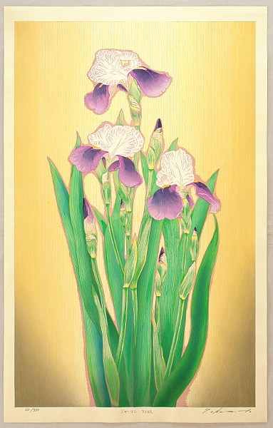 Ryusei Okamoto born 1949 - German Iris