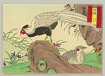 Hiroshige III Utagawa 1842-1894 - Bird and Flower - White Pheasants
