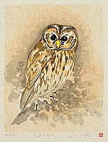 Fu Takenaka 1945 - - Owl