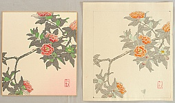Nisaburo Ito 1910-1988 - Camellia - Watercolor and Finished Print
