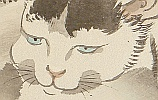 Gyokusho Kawabata 1842-1914 - Cat with Blue Eyes