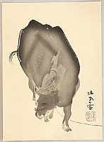 Seiho Takeuchi 1864-1942 - Twelve Zodiac Signs - Ox