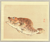 Bairei Kono 1844-1895 - Red Fish