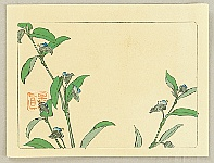 Zeshin Shibata 1807-1891 - Hana Kurabe - Flowering Plant