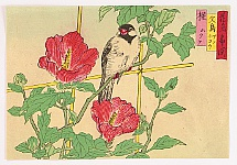 Hiroshige II Utagawa 1829-1869 - Bird and Chinese Hibiscus