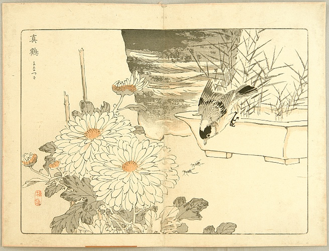 Bairei Kono 1844-1895 - 100 Chrysanthemums - with a Bird and Ants