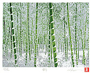 Hideaki Kato born 1954 - Bamboo Forest in Snow