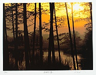 Hideaki Kato born 1954 - Sagano in Sunset