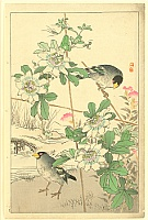 Bairei Kono 1844-1895 - Flower and Bird by Bairei - Passion Flower and Bird