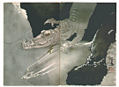 Seiho Takeuchi 1864-1942 - Crocodile Dragon