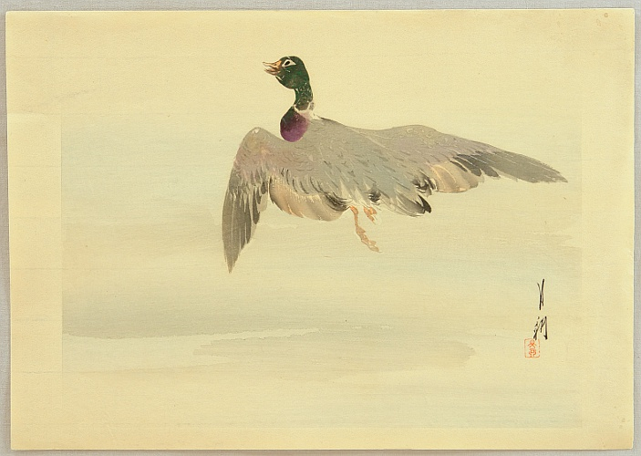 Gekko Ogata 1859-1920 - Gekko's Artwork - Flying Mallard