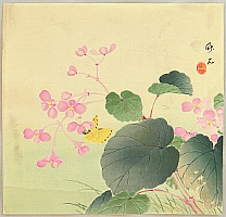 Chikuseki  active ca. 1900 - Flower and Butterfly