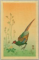 Pheasant - By Koson Ohara