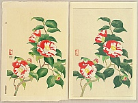 Nisaburo Ito 1910-1988 - Camellia - hand painted watercolors and a trial proof