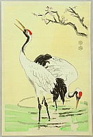 Eiichi Kotozuka 1906-1979 - Cranes and Plum Blossoms