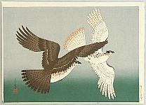 Flying Eagles - By Bakufu Ono.
