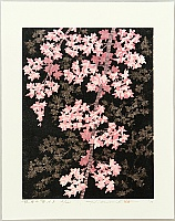 Hajime Namiki born 1947 - Weeping Cherry 16B