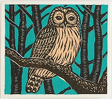 Keizaburo Tejima born 1935 - Owl on Tree Branch